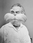 Walt Whitman as the Lorax3