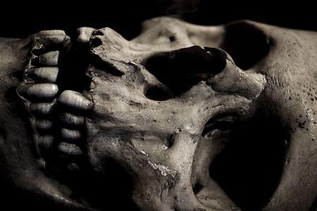 300px-Skullclose