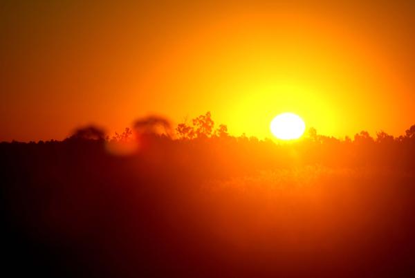 orange sunlight