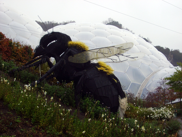 Big Bee - by Jennifer Pendergast